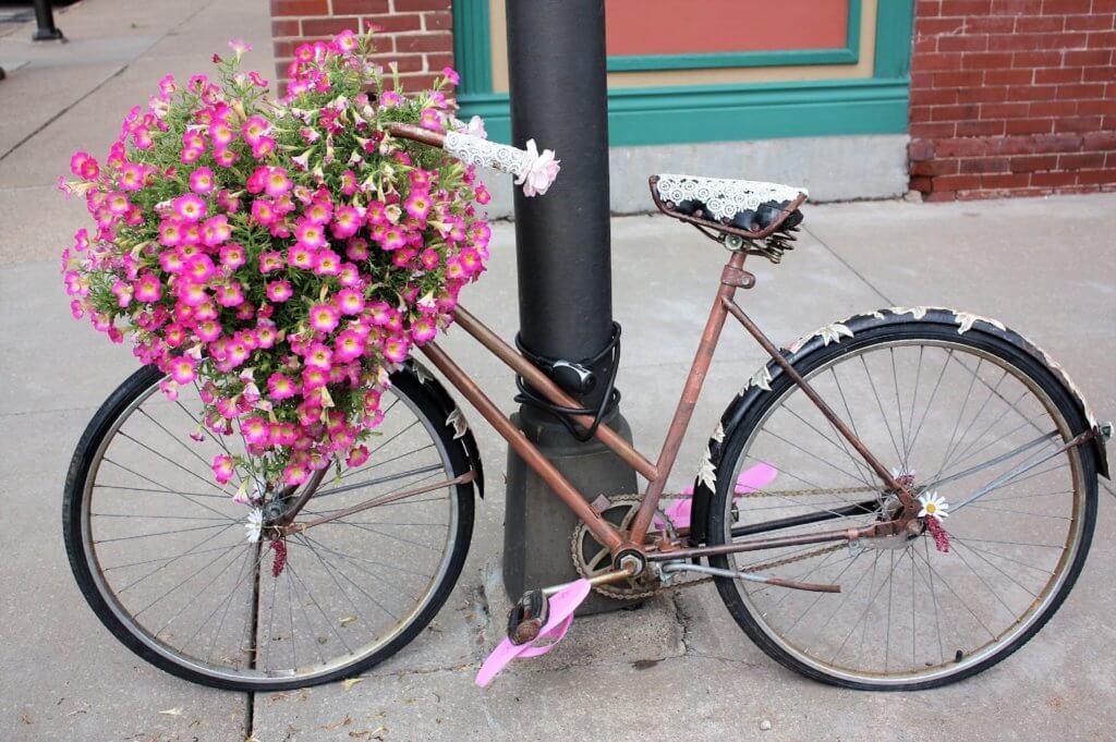 Art downtown biking flowers colorful